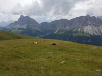 Italien Wandern in Südtirol - Dolomiten (43)
