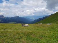 Italien Wandern in Südtirol - Dolomiten (124)