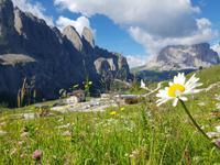 Italien Wandern in Südtirol - Dolomiten (219)
