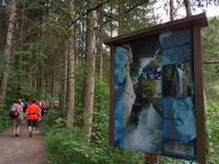Wandern in Südtirol (Italien) – Dolomiten Wanderreise in Sterzing Astjoch – Sellajoch – Seiser Alm – Gemeinschaftsalm Fane – Burkhardtsklamm – Ratschinger Almenweg – Tatschsp (279)