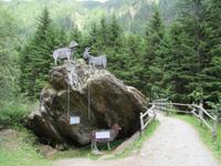 Wanderung auf dem Südtiroler Milchweg