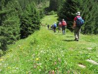 Wanderung zur Burkhardklamm