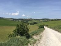 032 Wanderung San Quirico d'Orgia - Pienza