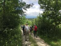 119 Wanderung von Vivo d'Orcia nach Seggiano