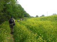 Wanderung Certaldo