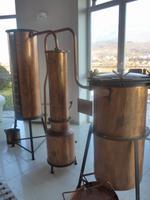 Grappa-Destille Marzadro
