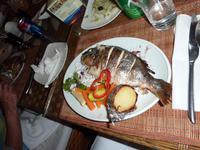 Fischessen in Aqaba