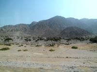 Halbwüste im Wadi Aqaba