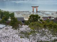 Insel Miyajima - Itsukushina-Schrein