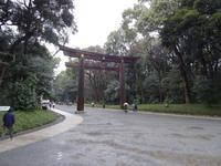Torii am Meiji-Schrein