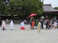 Hochzeit beim Meiji-Schrein