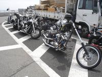 Harley -Motorräder auch in Japan sehr beliebt