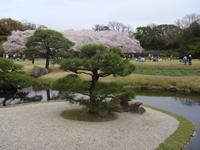 Okayama Korakuen Garten (Wandelgarten)