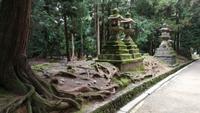 Kasuga Taisha Shinto Schrein Nara