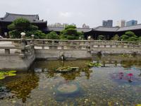 Nan Lian Tempel in Hongkong