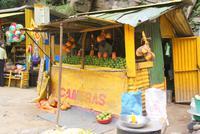 frische Mangos an den Rawana Wasserfällen...