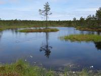 Lahemaa-Nationalpark