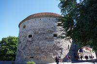 Tallinn - Kanonenturm Dicke Margarethe