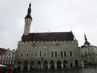 Rathaus in Tallin