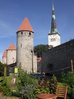 Stadtführung in Tallinn