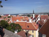 Blick über die Stadt Tallinn