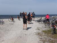 Radgäste auf Steinsammlung auf der Insel Saaremaa