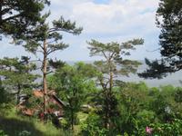 Blick vom Thomas-Mann-Haus auf das Haff