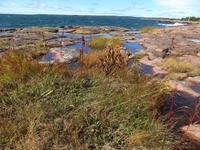 Aland-Inseln bei Eckerö