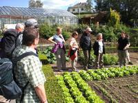 Garten- und Kräuterkunde