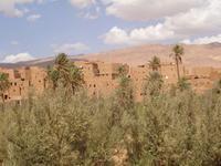 Kasbah in der Todraoase