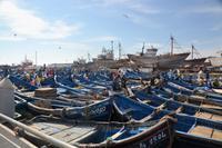 Essaouira Hafen4
