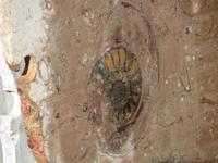 141_Fossilienwerkstatt