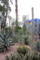Jardin Morelle, Marrakesch