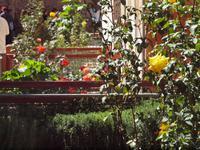 Garten der Saadirgräber Marrakesch