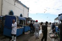 Fischmarkt in Essaouira