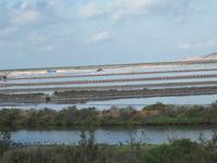 Ibiza - Salinen zur Gewinnung von Meersalz