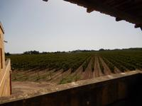 Weingut Meridiana