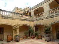 Am frühen Mittag besuchten wir das Weingut Meridiana.