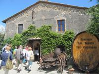 Toskana - Weingut Fattoria San Donato