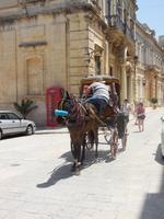 Kutschfahrt in Mdina