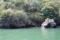 Bootsfahrt durch den Sumidero Canyon