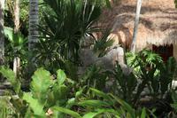 Unterkunft Mayaland Resort – Chichén Itzá