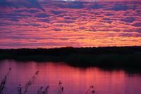 wunderschöner Sonnenuntergang auf der Hakusembe River Lodge