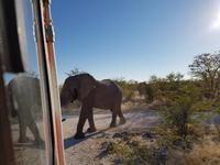 Tage Rundreise Namibia – Die Erlebnistour mit  Kalahari – Fish River-Canyon – Lüderitz – Namib – Swakopmund – Erongo Gebirge – Etosha Nationalpark – Windhoek (1483)