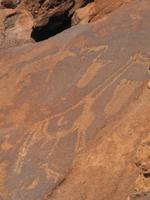 prähistorische Felsenkunst in Twyfelfontein