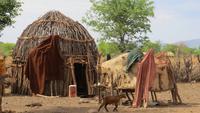 0868 Besuch im Himba-Dorf -