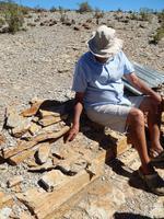 Fossilien im Mesosaurus Camp