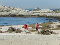 0349 am Diaz Point auf der Lüderitz-Halbinsel