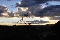 Sonnenuntergang über Windhoek