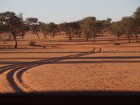 im Intu Afrika Kalahari Reservat